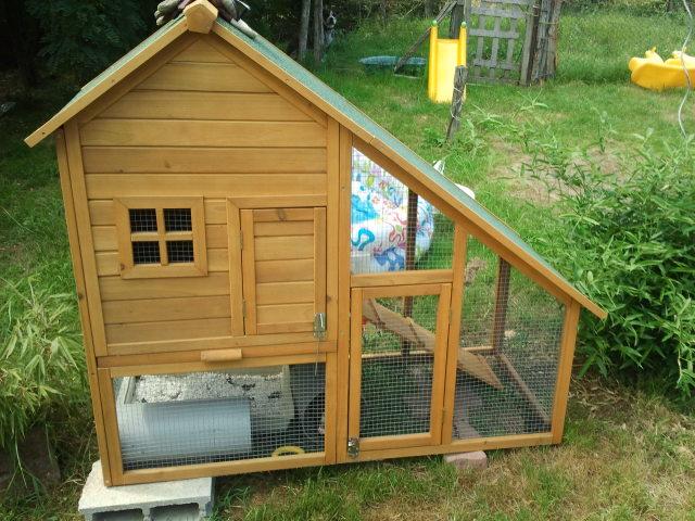 Cage exerieur pour vos rongeurs for Parc a lapin exterieur